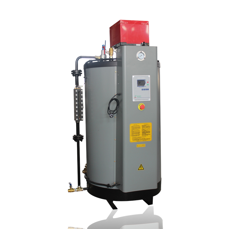 Top Burning LPG Gas Steam Boiler